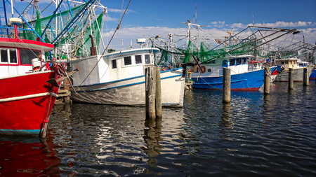 Colorful shrimp fishing boats docked in harbor at Biloxi, Mississippi