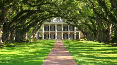 Tree lined entrance to Oak Alley southern plantation house in Vacherie, Louisiana