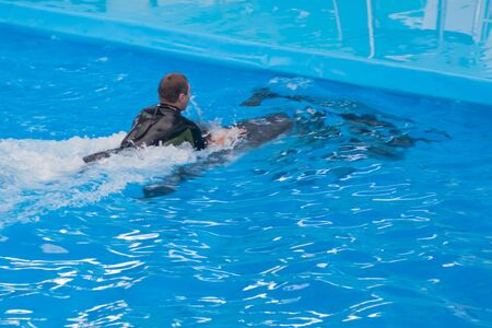 young white man in a wetsuit is swimming on a dolphin in the pool. swimming with wild sea animals, with dolphins. dolphin therapy, petotherapy, zootherapy, rehabilitation medicine