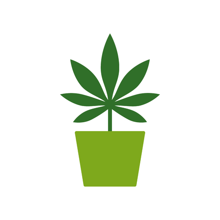 Marijuana or cannabis plant in a flower pot. Cultivation of cannabis. Marijuana Leaf icon Logo Template. Health and Medical therapy. Drug consumption, marijuana use. Marijuana Legalization. Medical marijuana icon. Drug symbol. Isolated vector illustration on white background.
