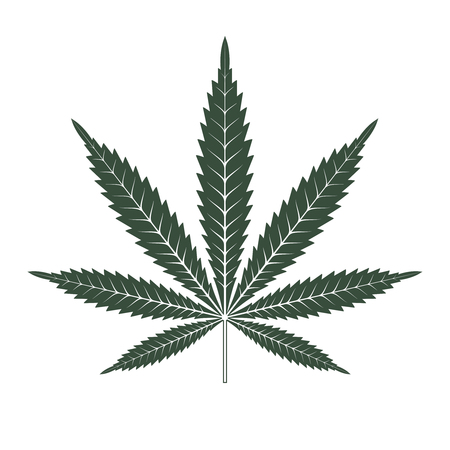 Marijuana or cannabis leaf Icon Vector Logo Template. Isolated illustration on white background.
