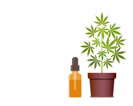 Marijuana plant and dropper with CBD oil. Cannabis Oil. Medical marijuana. CBD oil hemp products. Oil glass bottle mock up. Cannabis extract. Isolated vector illustration with copy space.