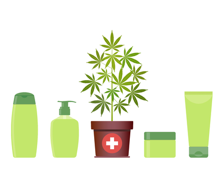 Marijuana or cannabis plant in pot with hemp cosmetic products. Cream, shampoo, liquid soap, body cream. Natural ecological cosmetics. Medical cannabis. CBD oil hemp products. Bottle mock up. Vector. Illustration