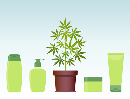 Marijuana or cannabis plant in pot with hemp cosmetic products. Cream, shampoo, liquid soap, body cream. Natural ecological cosmetics. Medical cannabis. CBD oil hemp products. Bottle mock up. Vector. Illustration