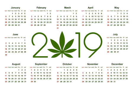 Marijuana calendar for 2019. Medical Cannabis. Simple Vector Template. Stationery Design Template. Isolated vector illustration on white background.