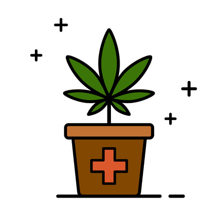 Cannabis plant in a flower pot. Medical marijuana. Growing cannabis. Isolated vector illustration on white background. Çizim
