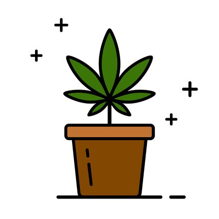 Cannabis plant in a flower pot. Medical marijuana. Growing cannabis. Isolated vector illustration on white background. 向量圖像