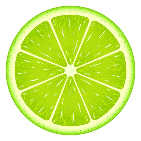 Lime slice isolated on white background. Fresh fruit.  イラスト・ベクター素材