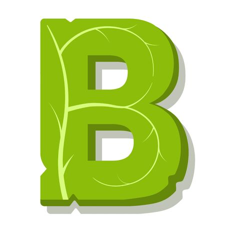 Letter B, green leaves summer vector alphabet. The simple  of letter B green color. Isolated illustration on white background.