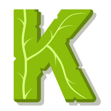Letter K, green leaves summer vector alphabet. The simple logo of letter K green color. Isolated illustration on white background. Illustration