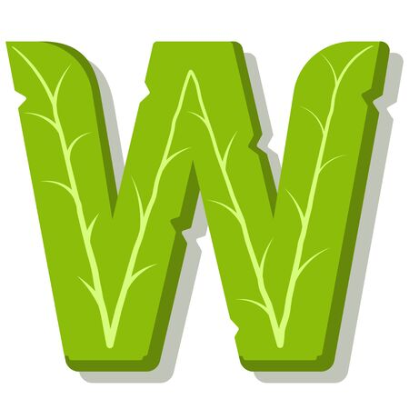 Letter W, green leaves summer vector alphabet. The simple  of letter W green color. Isolated illustration on white background.