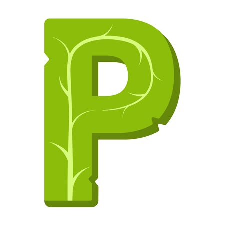 Letter P, green leaves summer vector alphabet. The simple logo of letter P green color. Isolated illustration on white background.