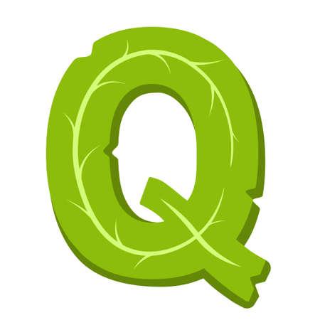 Letter Q, green leaves summer alphabet isolated on white background.
