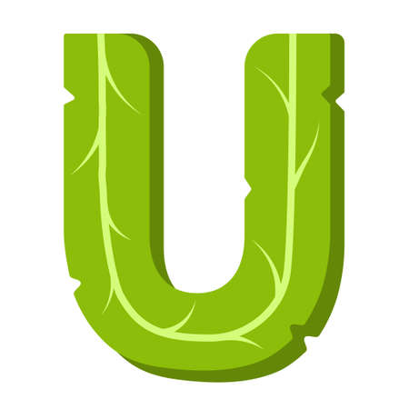Letter U, green leaves summer alphabet isolated on white background. Illustration