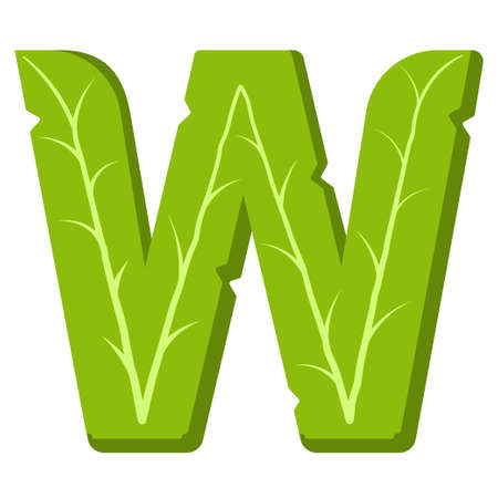Letter W, green leaves summer vector alphabet. The simple logo of letter W green color. Isolated illustration on white background.