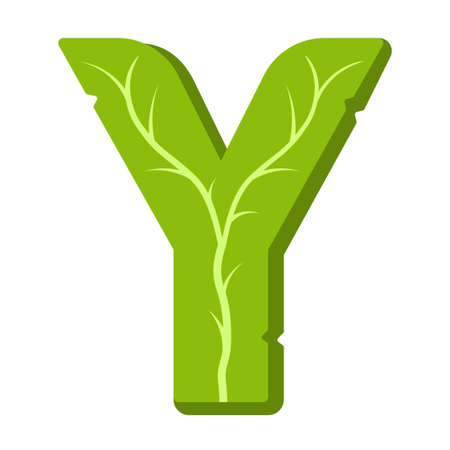 Letter Y, green leaves summer vector alphabet. The simple logo of letter Y green color. Isolated illustration on white background.