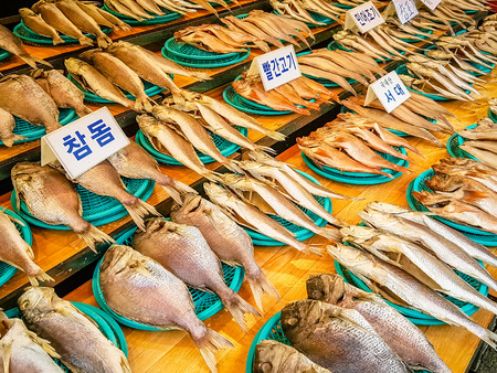Busan South Korea jagalchi fish market. For sure one of the many attractions in the area and somewhere everyone should visit if you love seafood