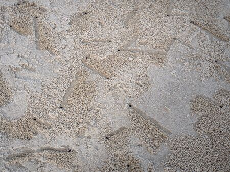 Little insect or crab holes in the beach on the island of Koh Samet thailand South East Asia