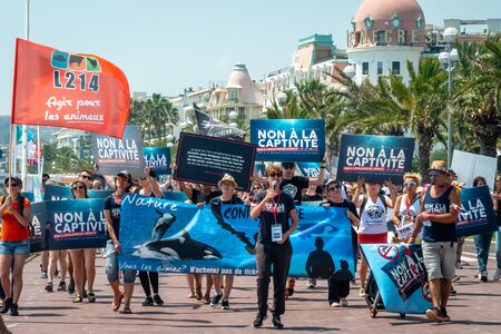 Group of people Protests and demonstrations on Nice Beach front about cruelty and killing of marine life, fish, dolphins and whales. France