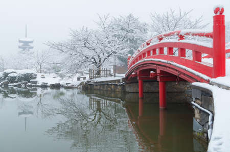 Wuhan winter snow scenery