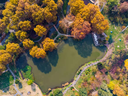 Late autumn scenery in Wuhan Jiefang Park, Hubei