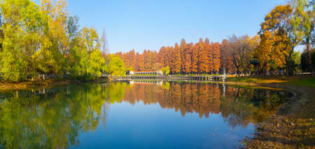 Hubei Wuhan Liberation Park late autumn scenery