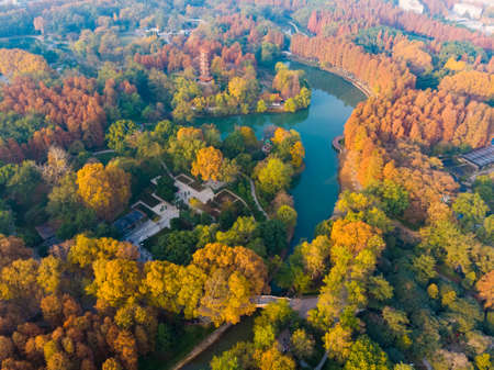 Hubei Wuhan Liberation Park late autumn aerial scenery