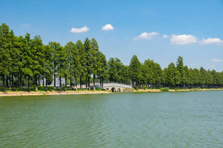 Summer scenery of East Lake Tourism Scenic Area in Wuhan, Hubei