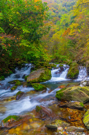 Autumn scenery of Muyuxiangxiyuan Scenic Area in Shennongjia, Hubei