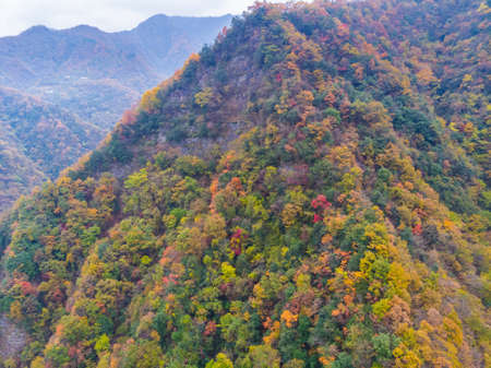 Late autumn scenery of Qingliangzhai Scenic Area in Wuhan, Hubei