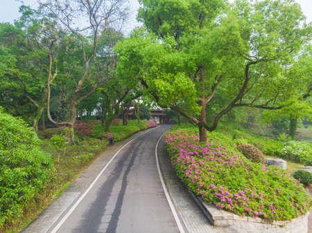 Early spring aerial scenery of Moshan Rhododendron Garden in East Lake, Wuhan, Hubei 版權商用圖片