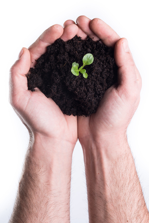 bod: Mans hands holds topsoil with bod on white background Stock Photo