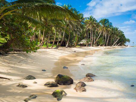 corn island: Tropica beach with cocononuts palm on a caribbean island Stock Photo