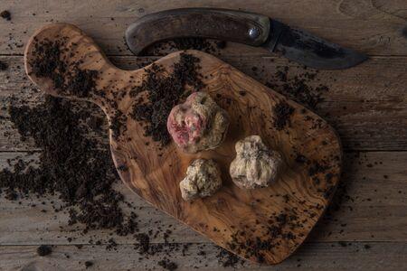 truffe blanche: Top view alba white truffle on wood board and trufflesknife