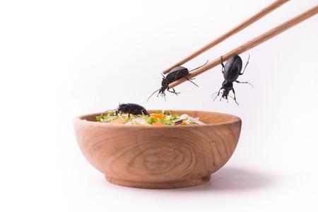 taking future beetle food with wood chopsticks