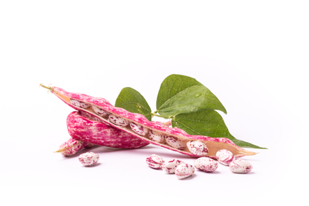 Common beans or phaseolus vulgaris on isolated white background Archivio Fotografico