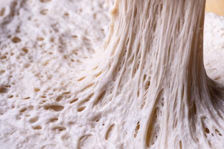 alveolus gluten net fermentation on bread dough Archivio Fotografico