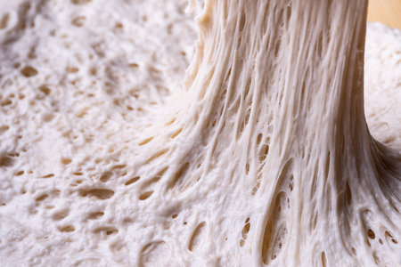 alveolus gluten net fermentation on bread dough Stockfoto