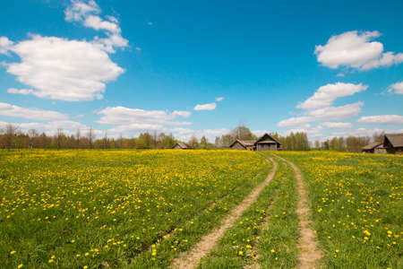 Pleasant sunny summer landscape: old blue sky and clouds, green grass, yellow dandelion flowers on a meadow, old historical country building and country road. A happy idyllic scenery view. Фото со стока