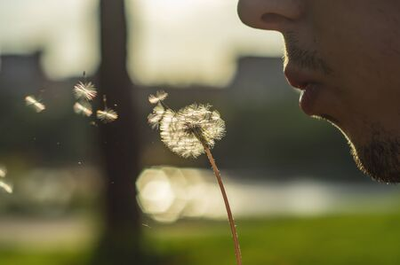Man with dandelion over blured green grass, summer nature outdoor. Stock Photo
