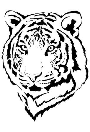 white fur: tiger head in black interpretation 3 Illustration