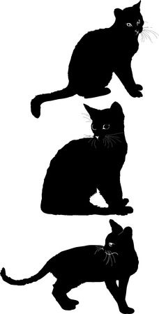 black cat silhouette: Cat set 1 Illustration