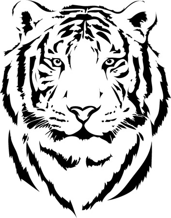 isolated on white: tiger head in black interpretation 2
