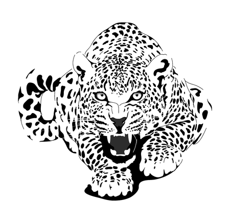 Leopard in black interpretation  イラスト・ベクター素材
