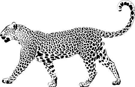 Lampart w czarnej interpretacji Ilustracje wektorowe