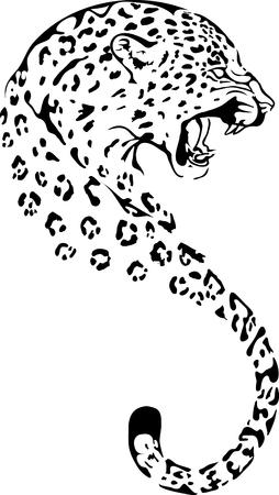 Leopard in black interpretation Illustration
