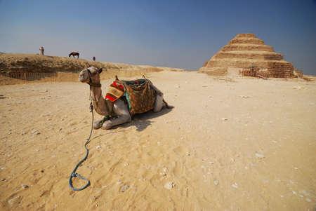 djoser: Step Pyramid of Djoser, Saqqara, Egypt Stock Photo
