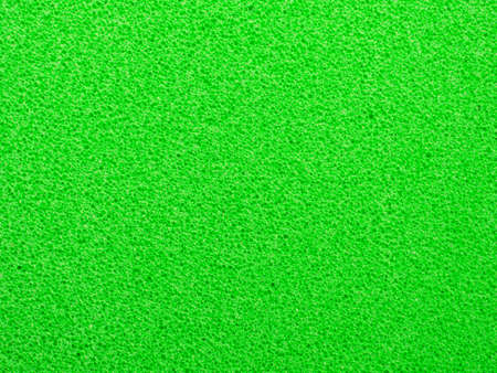Closeup green sponge detail texture for wallpaper and abstract background