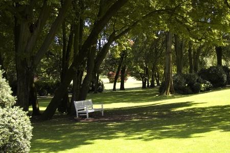 Panchina bianca del parco all'ombra Archivio Fotografico