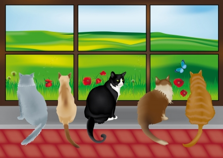Beautiful 5 cats looking out of the glass window with countryside scene Vector